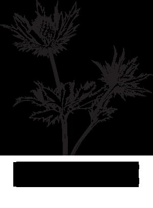 logo-big-retina